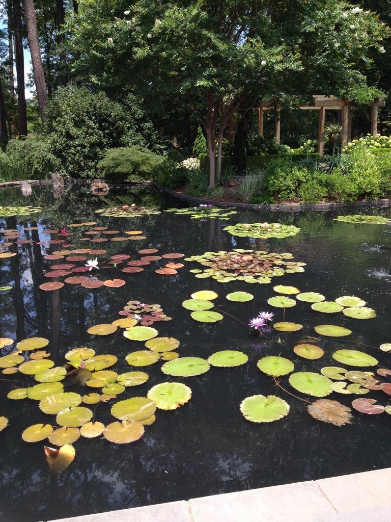 Blomquist garden duke gardens - Sarah P Duke Gardens Arthur In The Garden